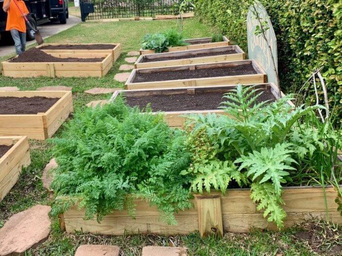 Compost Manure for Vegetable Garden Houston-TX 77099